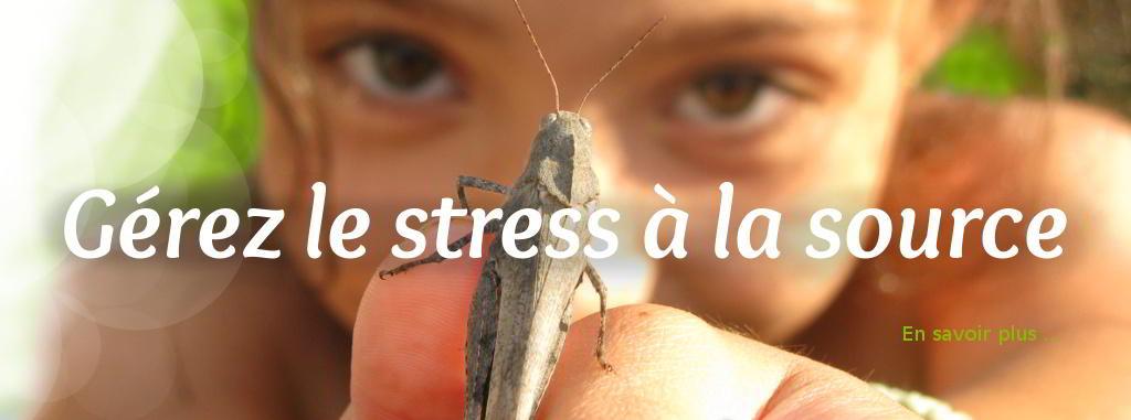 Gérez le stress à la source